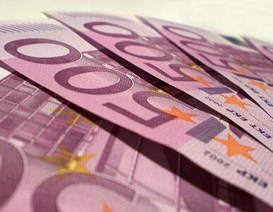 """""""Znaczne podwyższenie płacy minimalnej może uderzyć w Polskę"""""""