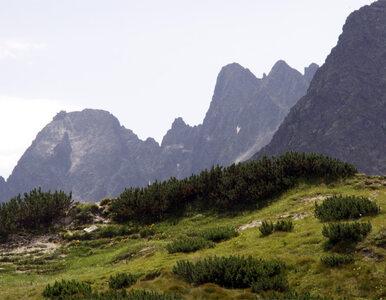 CNN doceniło Tatrzański Park Narodowy