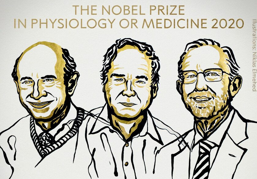 Laureaci nagrody Nobla 2020 w dziedzinie medycyny i fizjologii