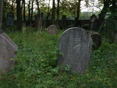 """Zdewastowano cmentarz żydowski w Siemiatyczach. """"Najgorsza..."""