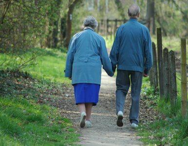 Rząd nie zrezygnuje z podniesienia wieku emerytalnego