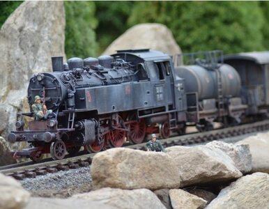 """Można oglądać """"złoty pociąg"""". Na razie w Parku Miniatur"""