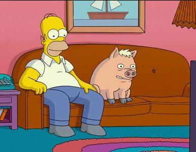 """Twórca """"Simpsonów"""": Kiedyś będzie drugi film, ale pierwszy """"prawie..."""