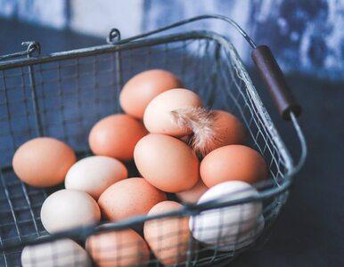 Jak wykorzystać skorupki jajek? Kilka praktycznych, zaskakujących...