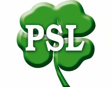 Zamiast budowy środowiska centroprawicowego, PSL skręca w lewo