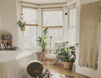 Nowelizacja Mieszkania+ może przynieść duże zmiany. Będzie trudniej o...