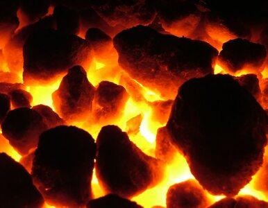 Czy warto umierać za węgiel?
