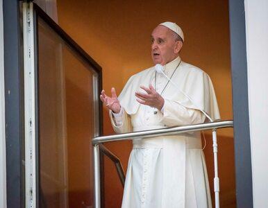 Franciszek w Oknie Papieskim: Muszę wam powiedzieć prawdę. Okrucieństwo...