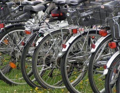 Policja rozbiła gang złodziei rowerów. Najmłodszy złodziej miał 14 lat