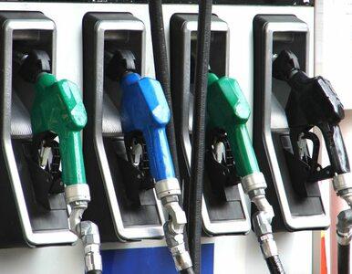 Lotos znowu podnosi ceny paliw