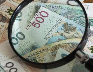 Kluza: Podwyżka wynagrodzenia minimalnego może przynieść efekt odwrotny...