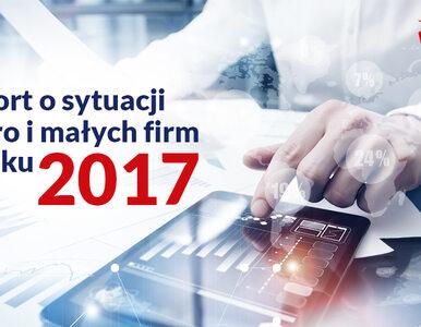 Raport o sytuacji mikro i małych firm w roku 2017. Przedsiębiorcy...