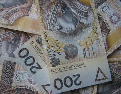 Prawie co druga pożyczka w Polsce jest udzielana w sieci
