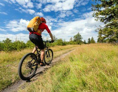 Parki i lasy zostaną otwarte. Czy będzie można biegać i jeździć na rowerze?