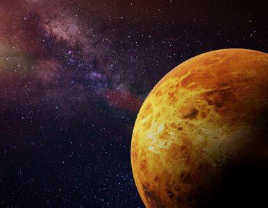 """Życie na Wenus? """"Byłem zaskoczony. Wręcz mnie zamurowało"""""""
