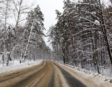 W poniedziałek śnieg i mróz. Jak będzie w kolejnych dniach?