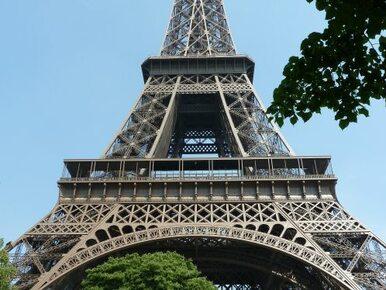 Paryż: Merkel, Cameron, Tusk i Kopacz wezmą udział w manifestacji