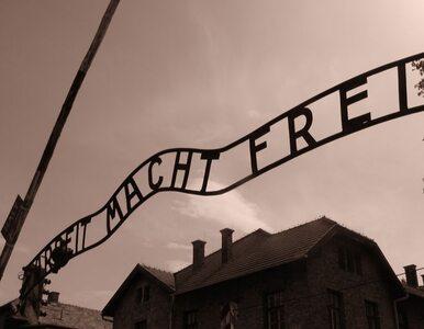 """Prokuratura chce 3,5 roku więzienia dla """"Buchaltera z Auschwitz"""""""