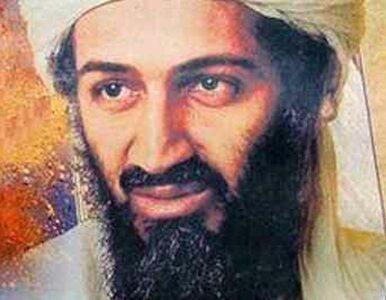 Amerykanie przesłuchują wdowy po bin Ladenie