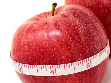 Dieta paleo – czy aby na pewno jest taka zdrowa?