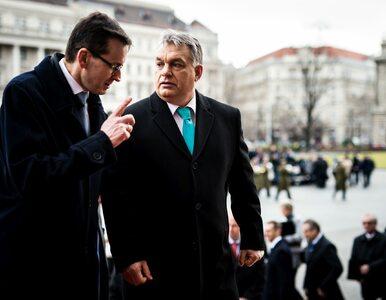 """Premier Morawiecki gratuluje Orbanowi. """"Droga reform nigdy nie jest prosta"""""""