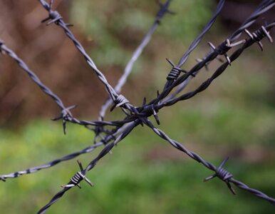 Rosjanie rozciągają drut kolczasty na gruzińskiej granicy