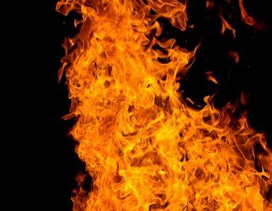 Pożar kamienicy. Jedna osoba nie żyje