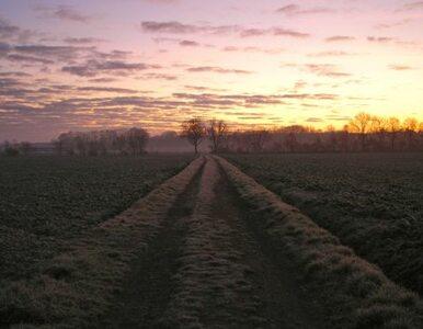 Kto kupuje ziemię? Najpierw rolnicy - potem reszta