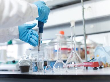 Naukowcy odkryli nowy mikroorgan w ludzkim ciele. Pomoże w zwalczaniu...