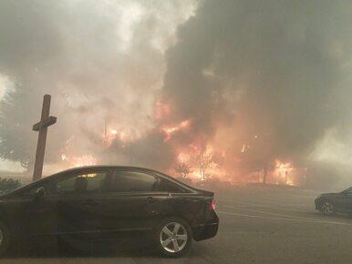 """Co najmniej 42 ofiary śmiercionośnych pożarów w Kalifornii. """"Czasami..."""