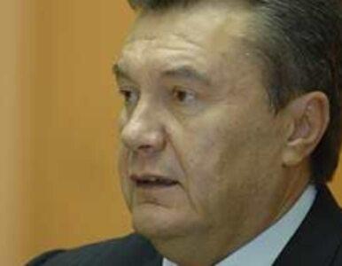 Współpracownicy Janukowycza ścigani międzynarodowymi listami gończymi