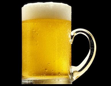 Jakie piwo piją Polacy?