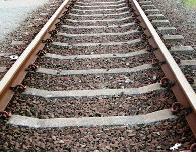 Utrudnienia w ruchu pociągów. Remont mostu