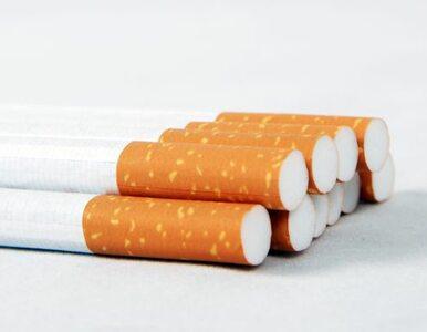 CBŚ przechwyciło ponad 1,2 mln nielegalnych papierosów