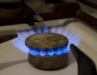 Będziemy kupować rosyjski gaz z Niemiec? Gudzowaty sprzedał projekt...