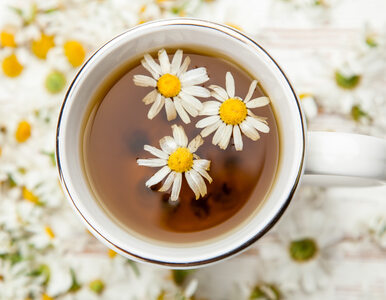 Jakie herbaty można podawać dziecku?