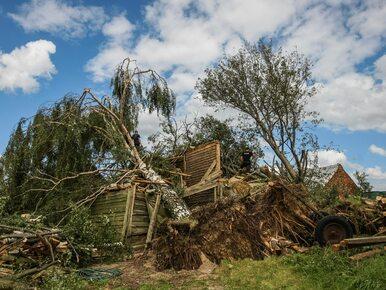"""2,5 mln zł wsparcia dla ofiar orkanu """"Ksawery"""""""
