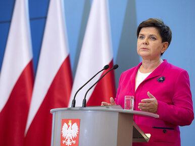 Szydło o akcji Misiewicze.pl: Znam. Bywam na Twitterze