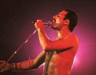 """W Warszawie powstanie aleja Freddiego Mercury'ego? """"Uważam, że pomysł..."""