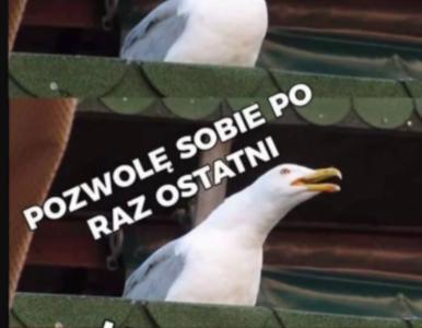 Szpakowski żegnający Piszczka, fatalny stan murawy i świetny...