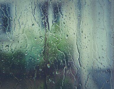 Prognoza na czwartek. Pogodnie z przelotnymi opadami deszczu