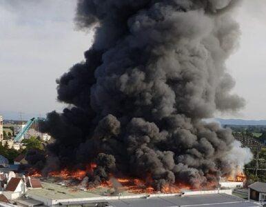 """Pożar w jednym z największych parków rozrywki w Europie. """"Płomienie..."""