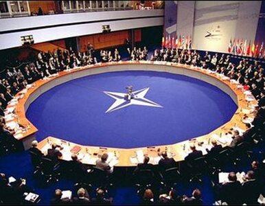 Polsko-litewski sojusz w NATO