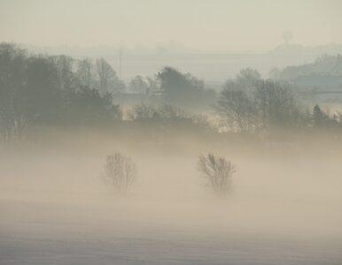 Odwołane loty i wypadki. Gęste mgły paraliżują Polskę. Sytuacja może się...