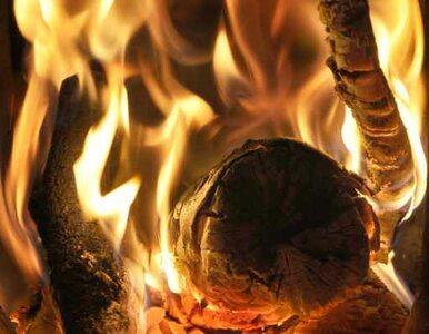 Kraków: pożar w bloku. Ewakuowano mieszkańców