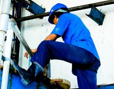 Rzuć socjologię, zostań inżynierem - pracy więcej niż pracowników
