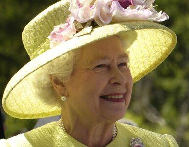 Elżbieta II wypije Guinessa w Dublinie?
