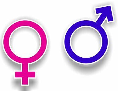 USA: Powstaną toalety przyjazne dla uczniów transpłciowych?