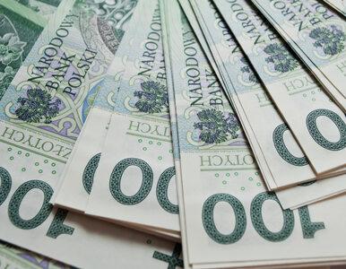 Pożyczki i poręczenia unijne